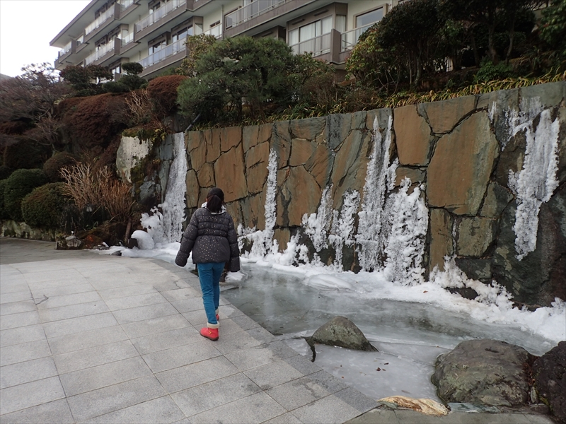 Ice on the hotel's Stone Wall